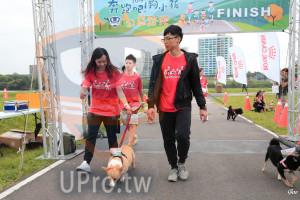 起、終點-03():奔跑吧!狗小孩,FINISH,Goa