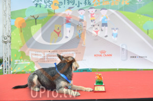 ():健持犁9骨,皇生物科技,贊助,ROYAL CANIN,人中華民國,2019.4. 27