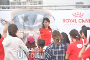 會場3(老人):ROYAL CANI