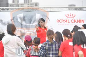 會場3(老人):ROYAL CANIN