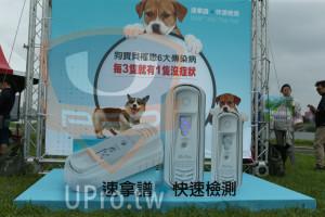 ():速拿譜 快速檢測,SNAP 4Dx Plus T,狗寶貝罹患6大傳染病,每3隻就有1隻沒症狀,書相片免費拍1區,划;,4Dx Plus,43x Plus,快速檢測,- 速拿譜