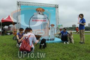 ():遼拿譜,快速檢測,狗寶貝罹患6大傳染病,每3隻就有1隻沒症狀