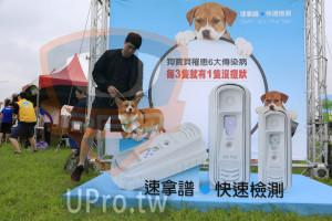 ():速拿譜 快速檢測,SNAP 4Dx Plus Test,狗寶貝罹患6大傳染病,每3隻就有1隻沒症狀,4Dx Plus,dx Plus,速拿譜,快速檢測